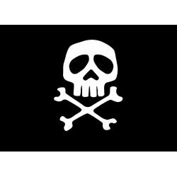Bandera Pirata Fantasia cm. 20 x 30